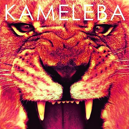 El activista (Kameleba) [2015]